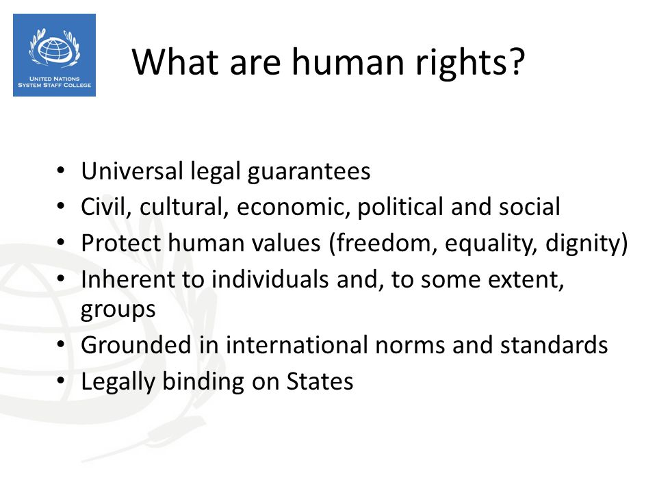 What are human rights Universal legal guarantees