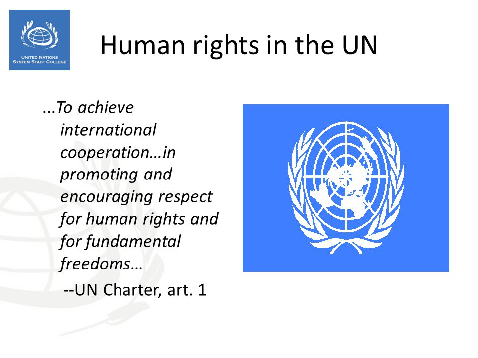 Human rights in the UN ...To achieve international cooperation…in promoting and encouraging respect for human rights and for fundamental freedoms…