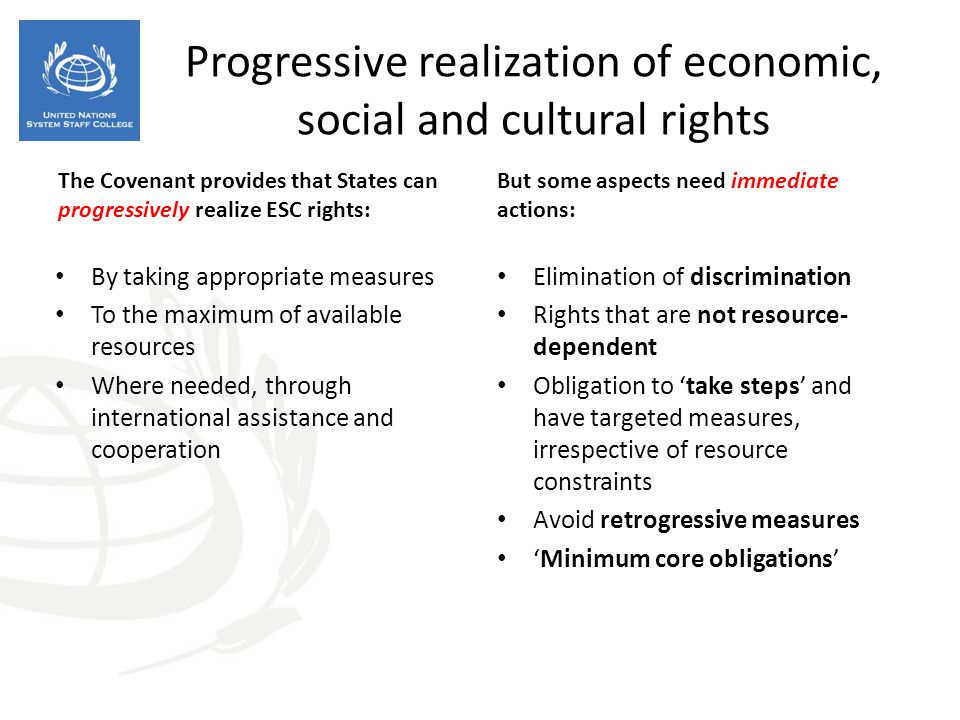 Progressive realization of economic, social and cultural rights