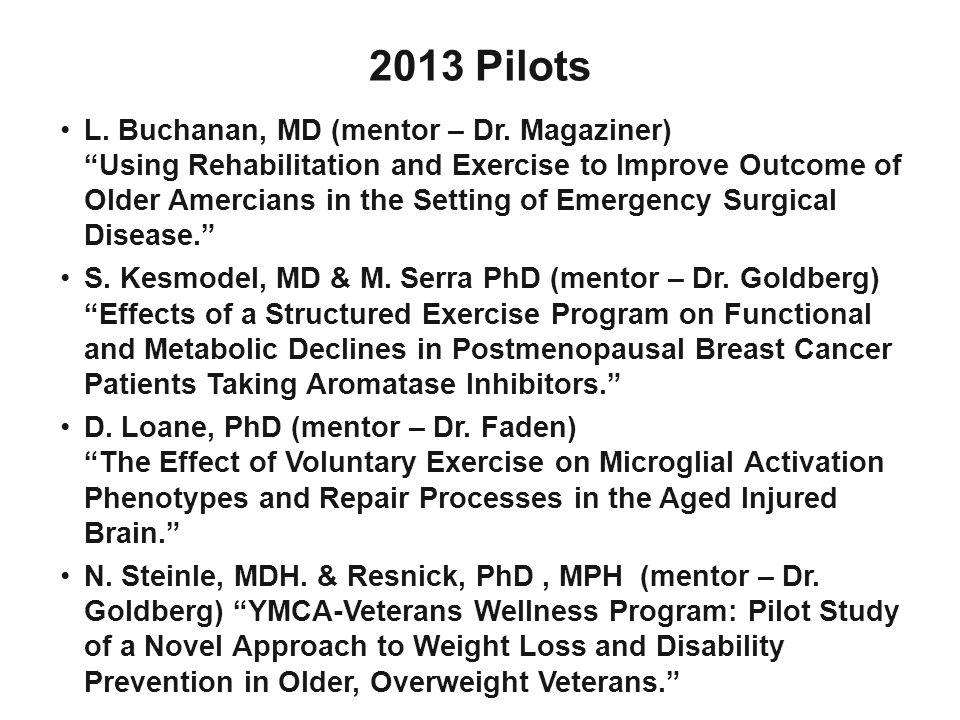 2013 Pilots