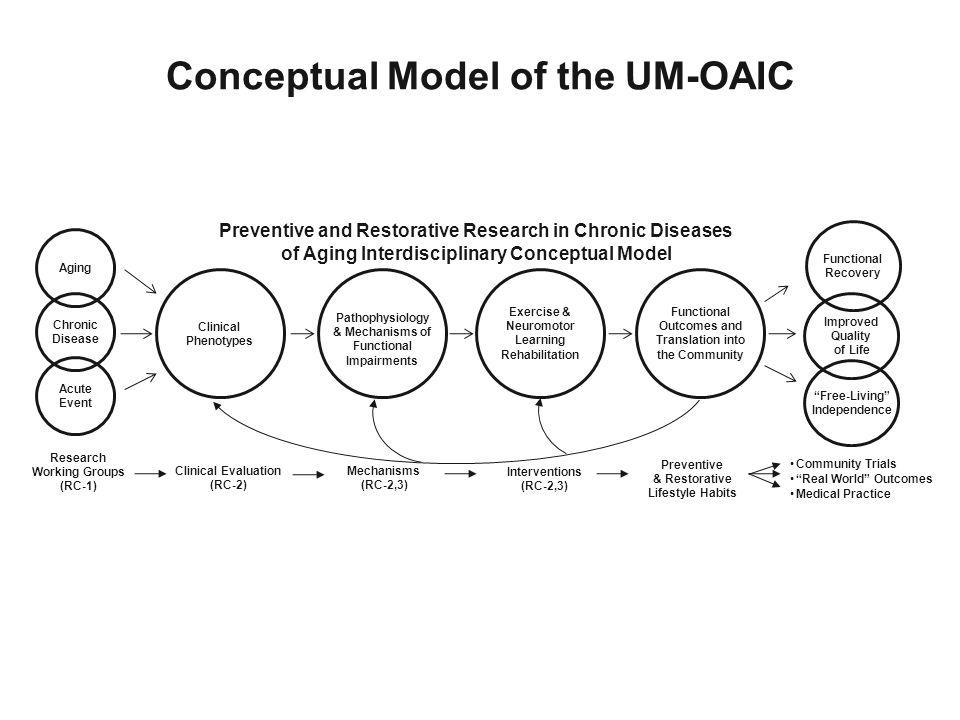 Conceptual Model of the UM-OAIC