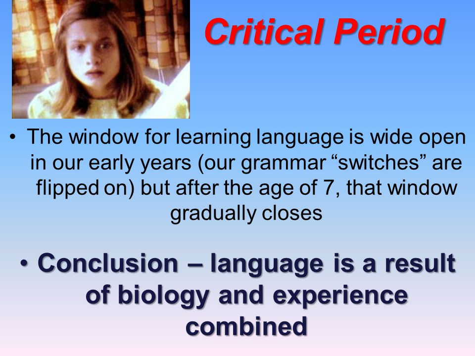 Conclusion – language is a result of biology and experience combined