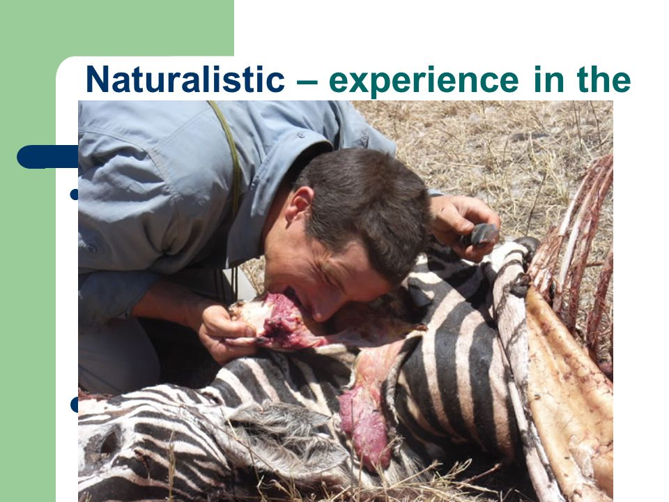 Naturalistic – experience in the natural world