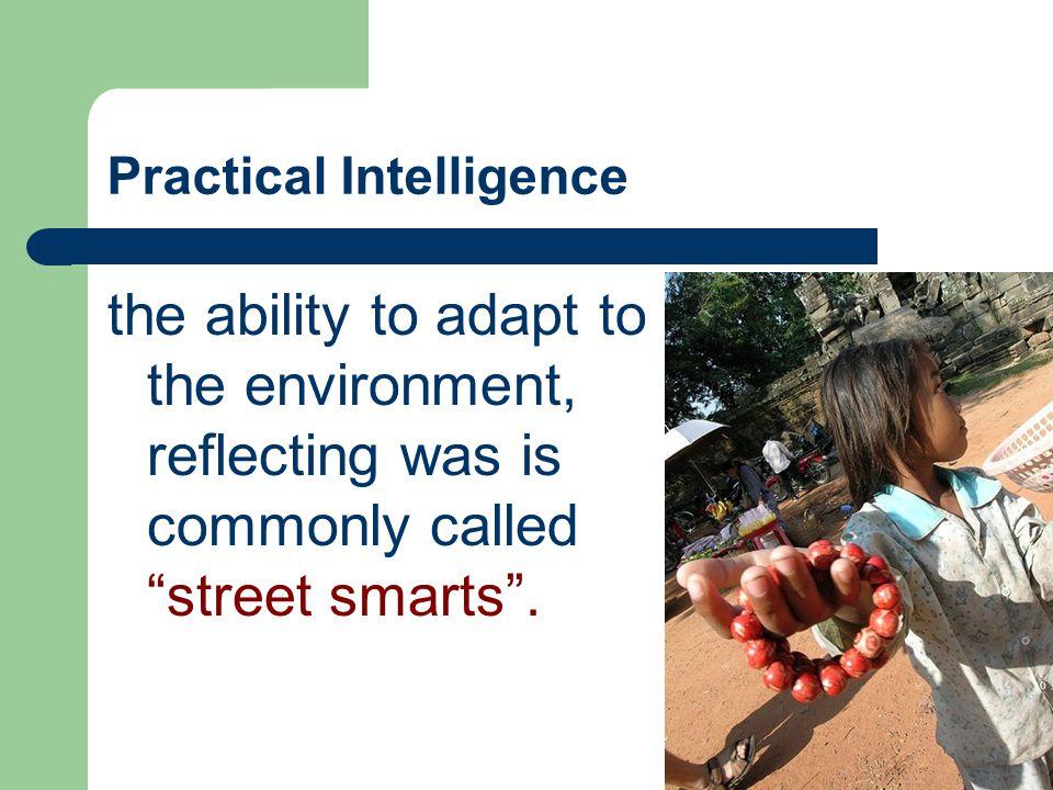 Practical Intelligence