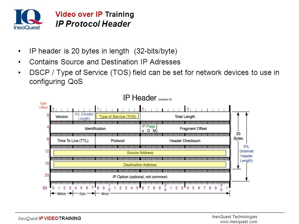 Video over IP Training IP Protocol Header