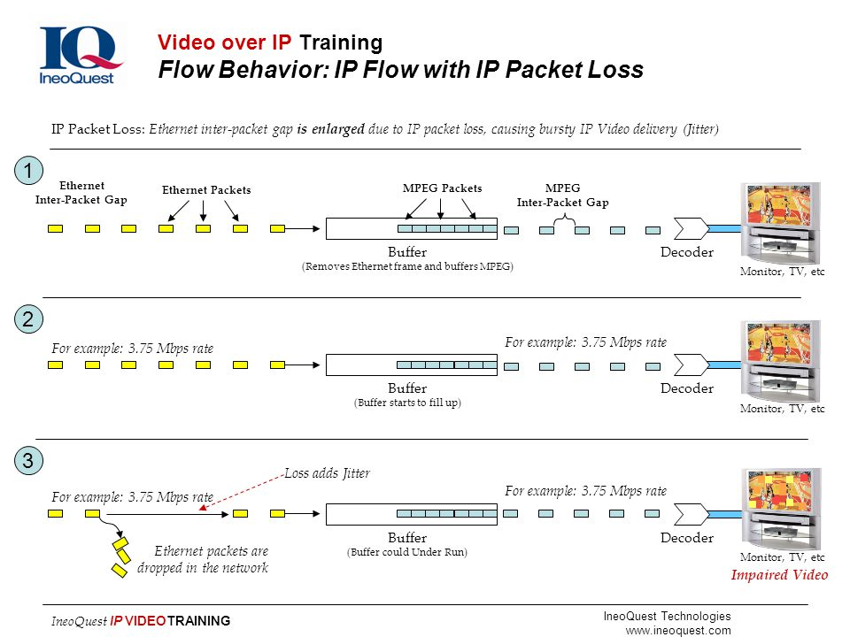 Video over IP Training Flow Behavior: IP Flow with IP Packet Loss