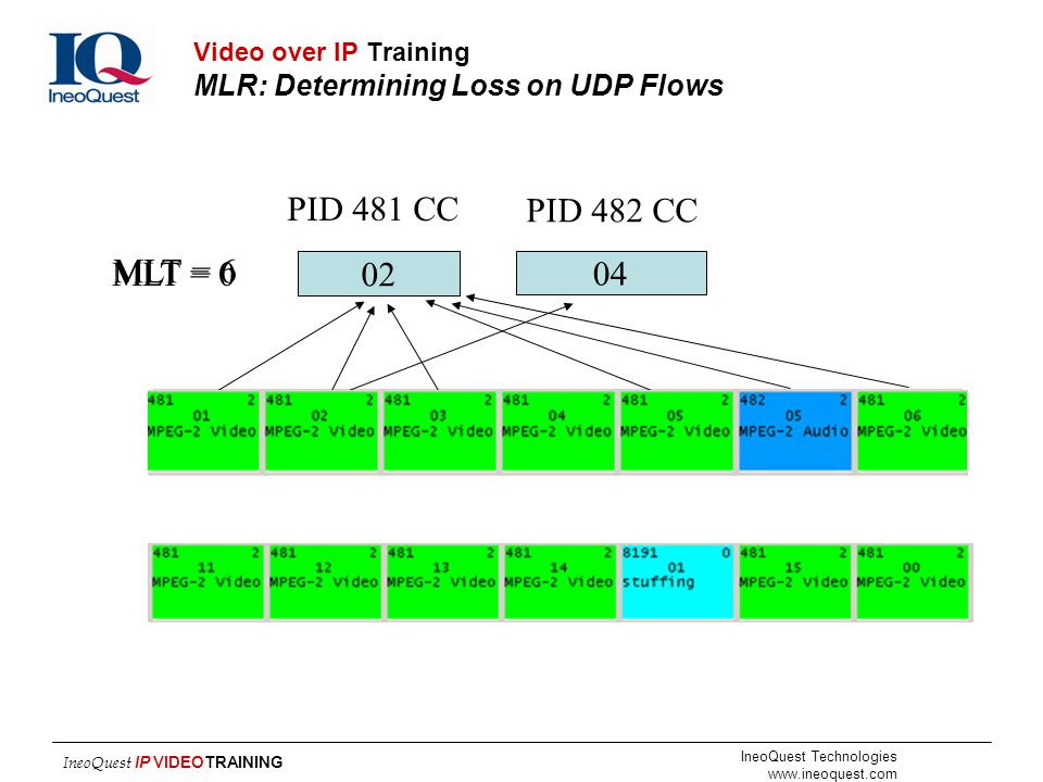 Video over IP Training MLR: Determining Loss on UDP Flows