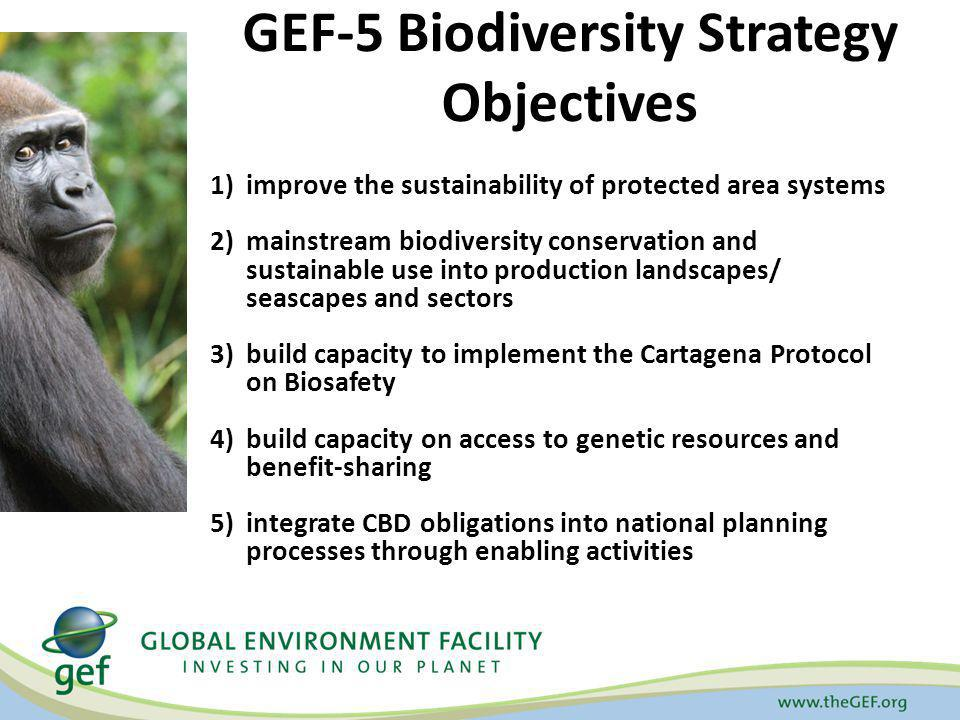 GEF-5 Biodiversity Strategy Objectives