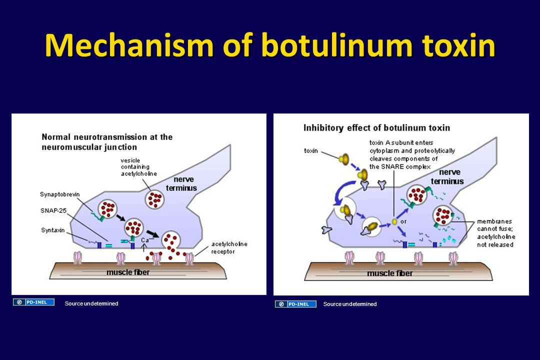 Mechanism of botulinum toxin