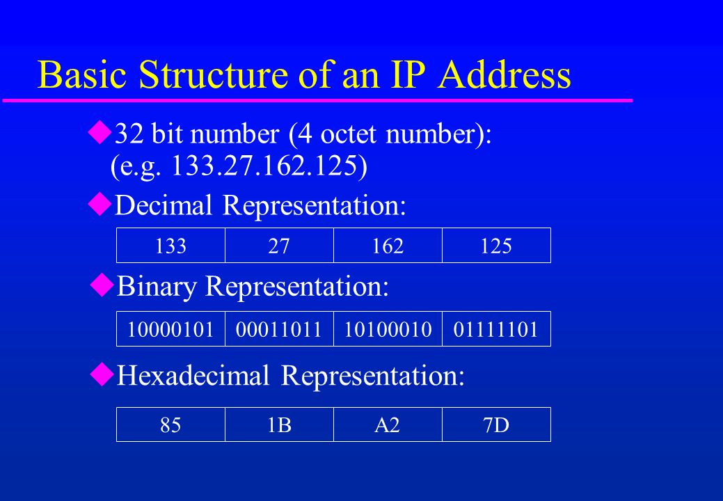 Basic Structure of an IP Address