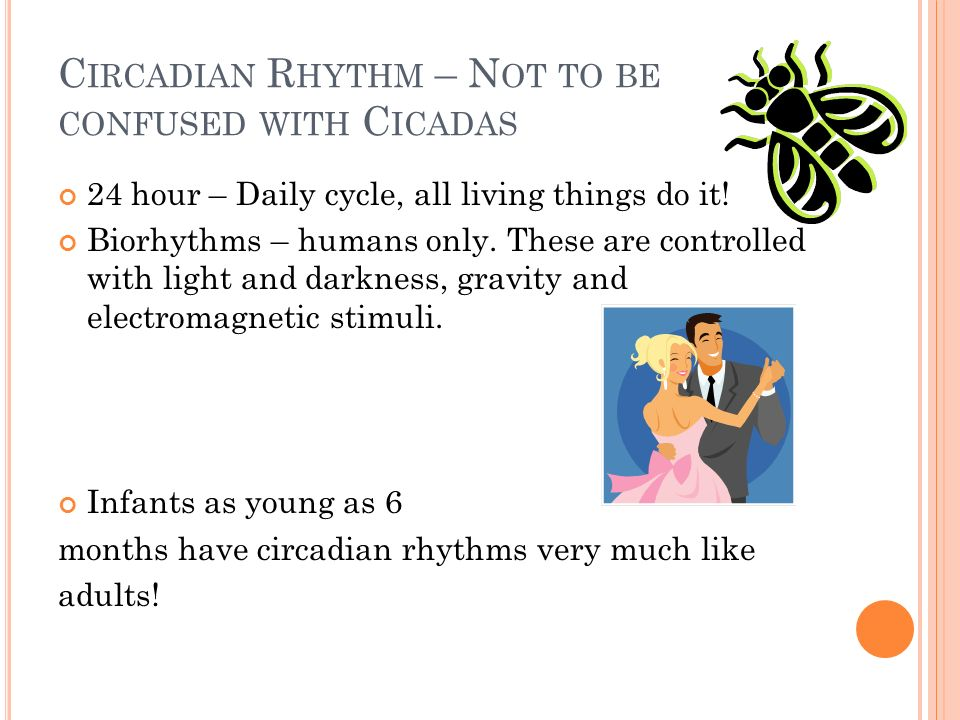 Circadian Rhythm – Not to be confused with Cicadas