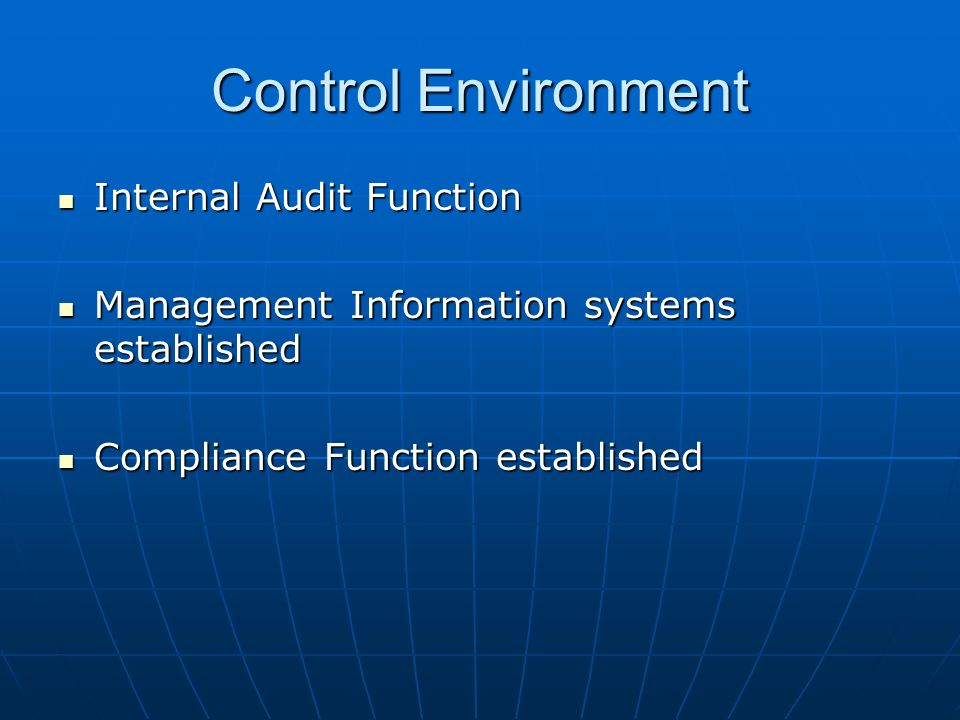 Control Environment Internal Audit Function