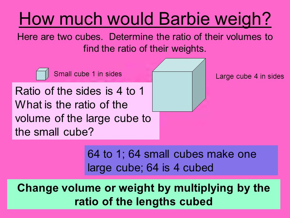 How much would Barbie weigh