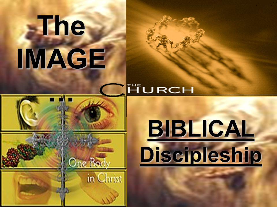 The IMAGE… BIBLICAL Discipleship