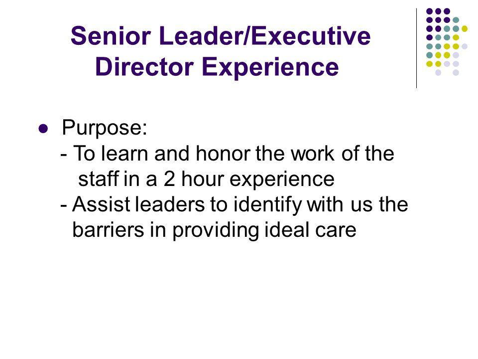 Senior Leader/Executive Director Experience