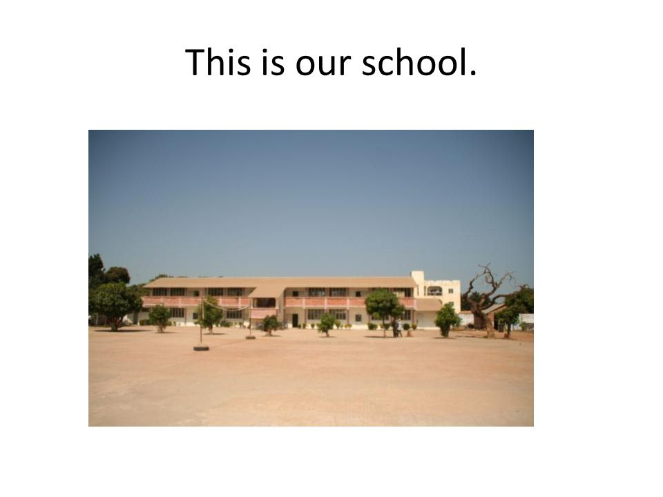 This is our school.