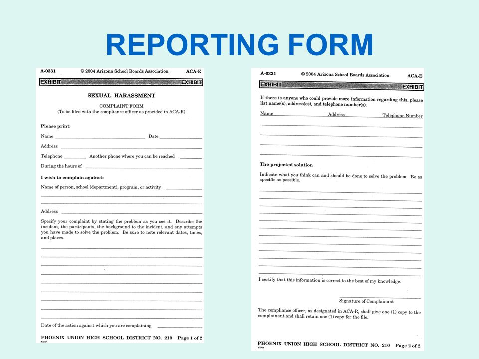 REPORTING FORM