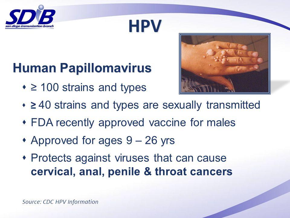 HPV Human Papillomavirus ≥ 100 strains and types
