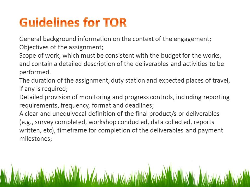 Guidelines for TOR General background information on the context of the engagement; Objectives of the assignment;