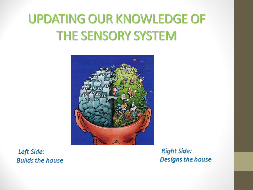 Updating our Knowledge of the Sensory System