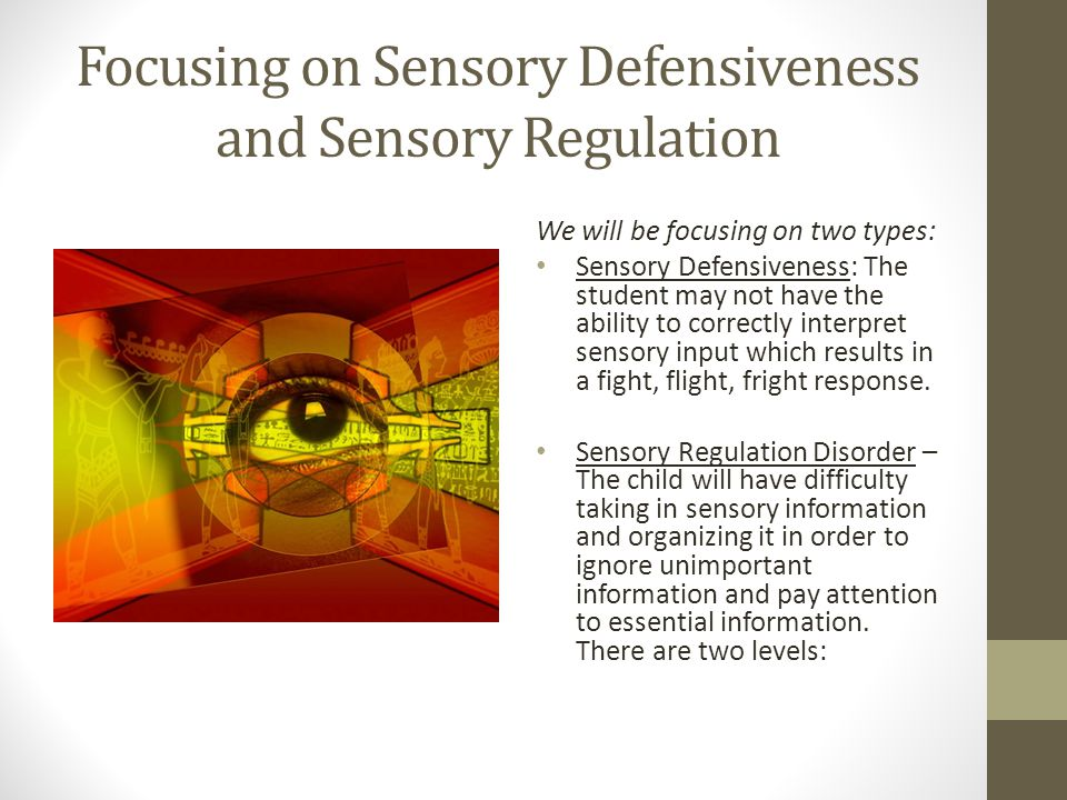 Focusing on Sensory Defensiveness and Sensory Regulation