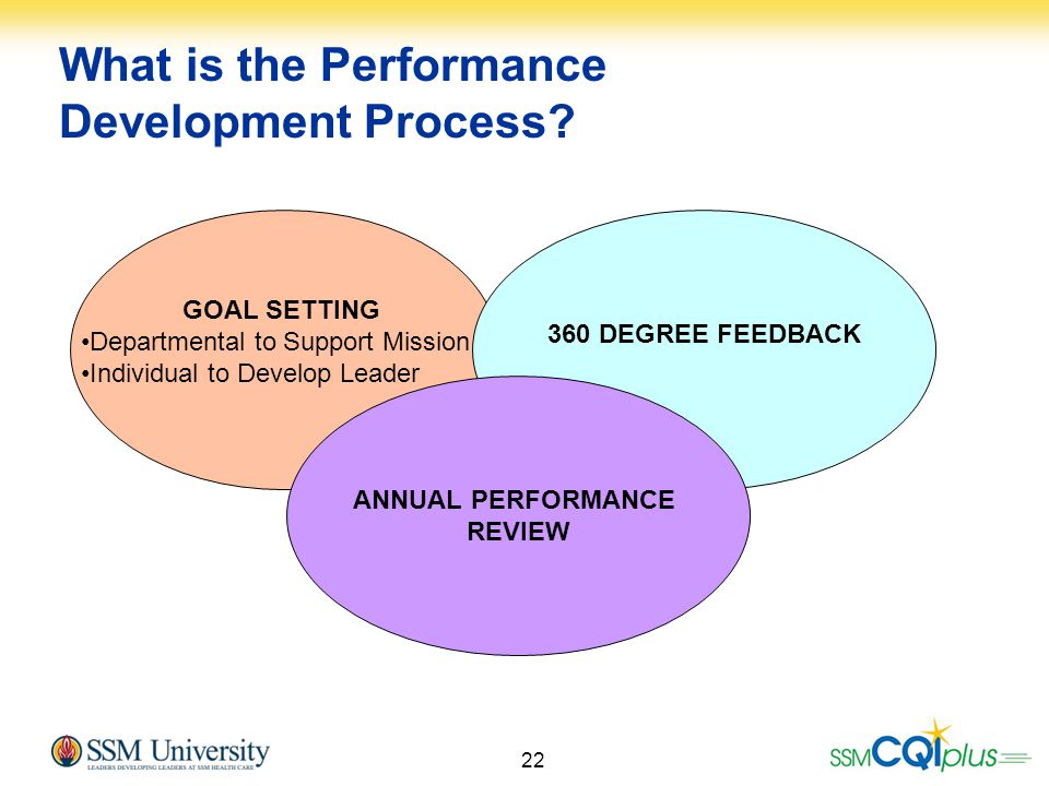 What is the Performance Development Process