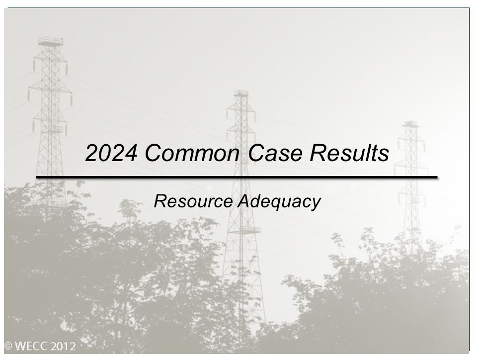 2024 Common Case Results Resource Adequacy