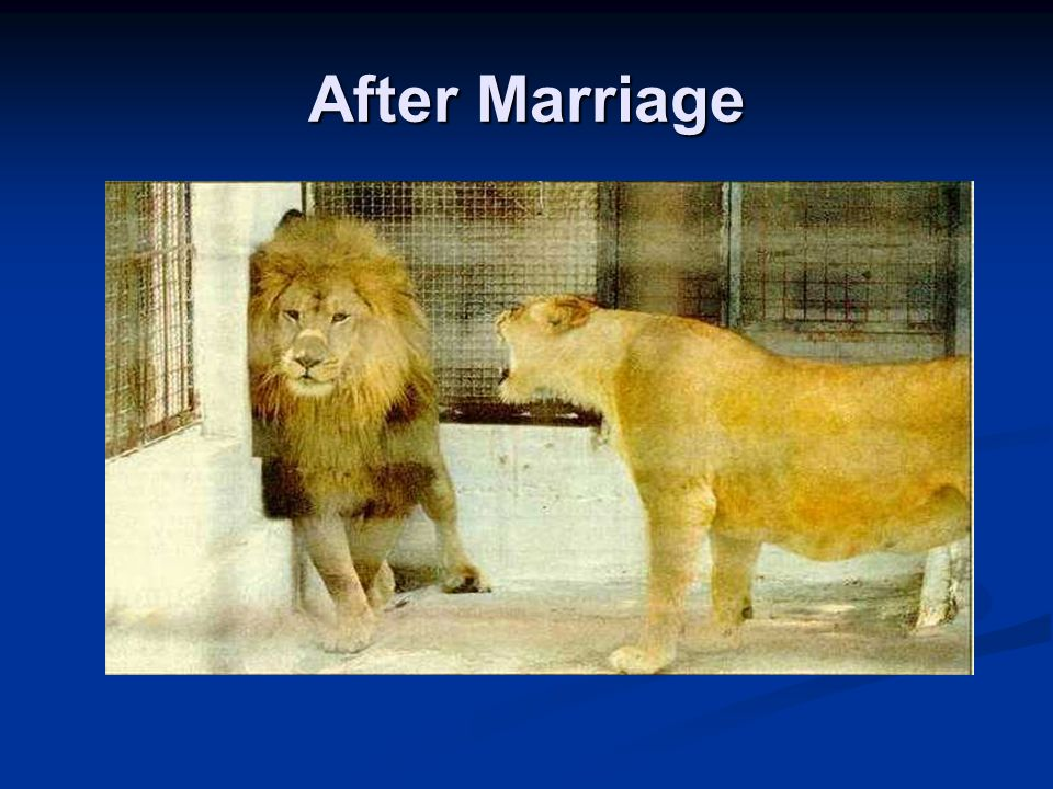 After Marriage