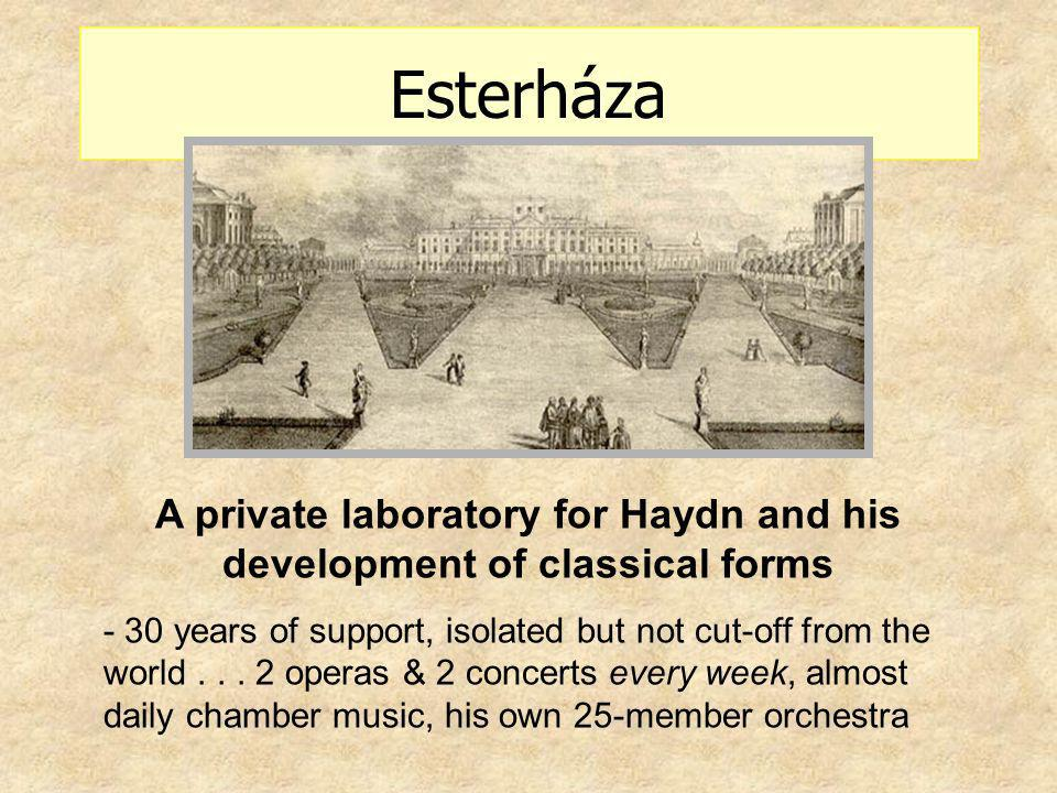 A private laboratory for Haydn and his development of classical forms