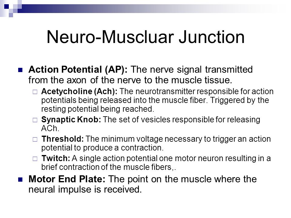 Neuro-Muscluar Junction