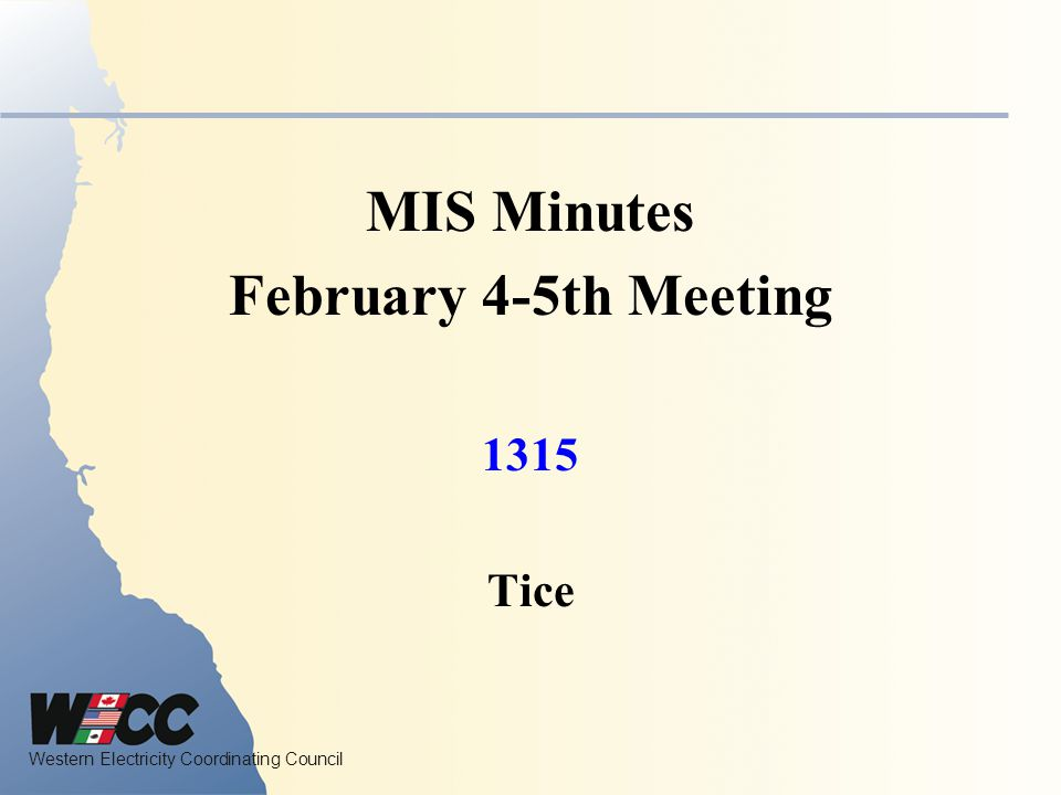 MIS Minutes February 4-5th Meeting
