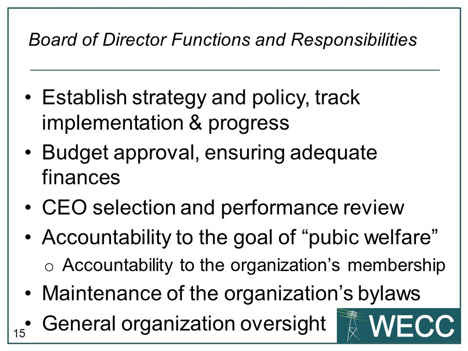 Board of Director Functions and Responsibilities