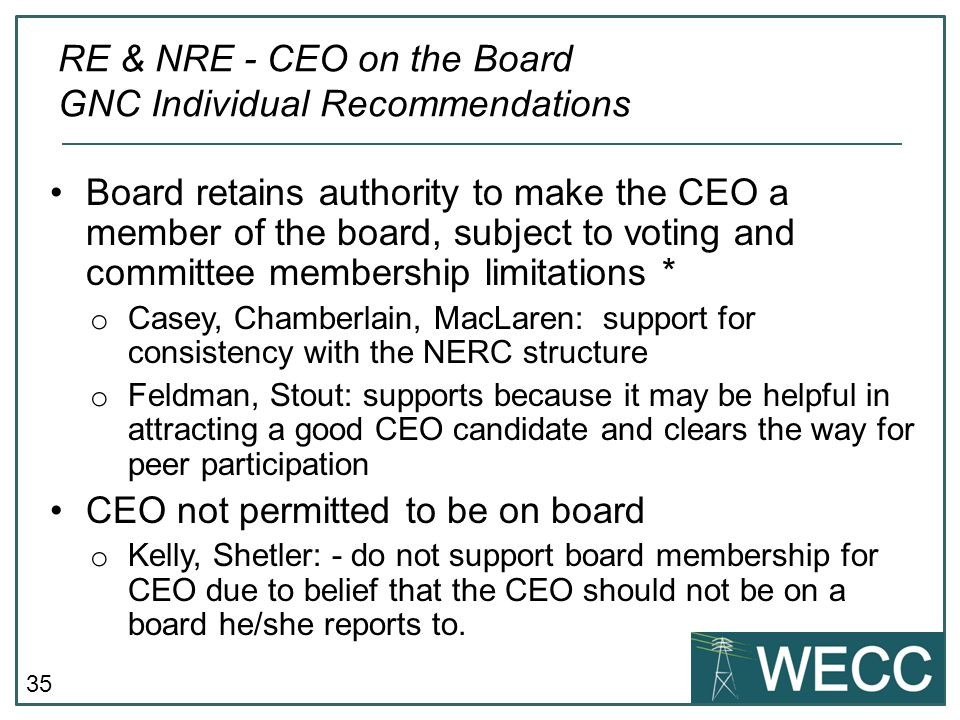 RE & NRE - CEO on the Board GNC Individual Recommendations