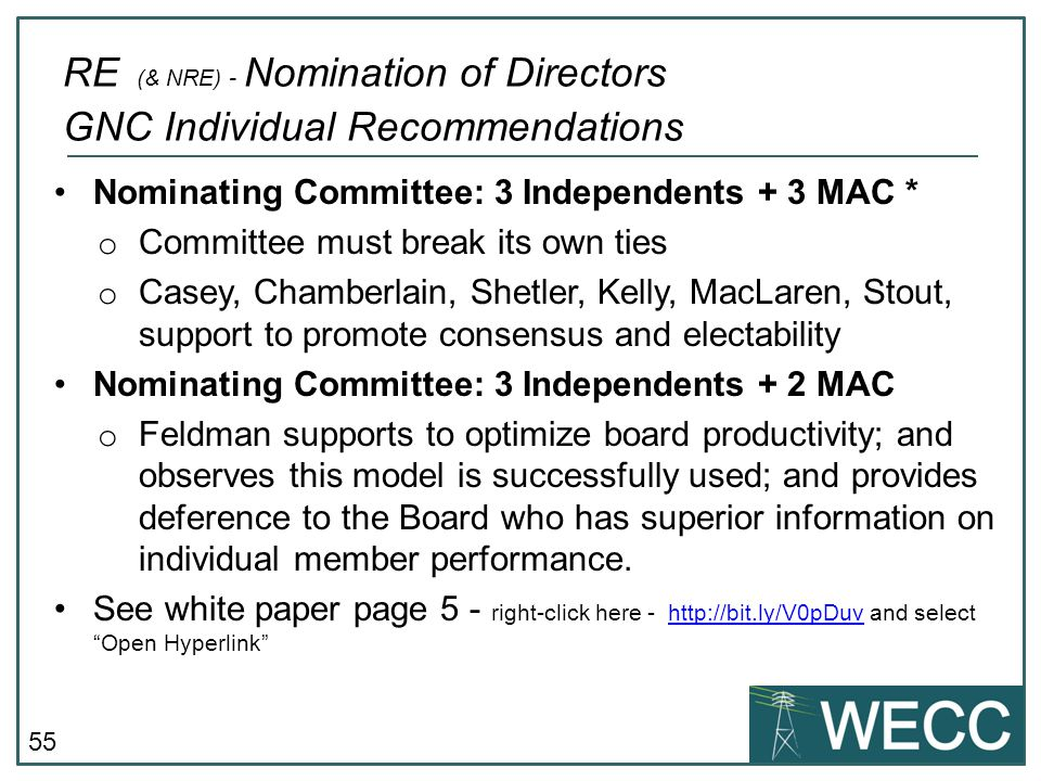 RE (& NRE) - Nomination of Directors GNC Individual Recommendations