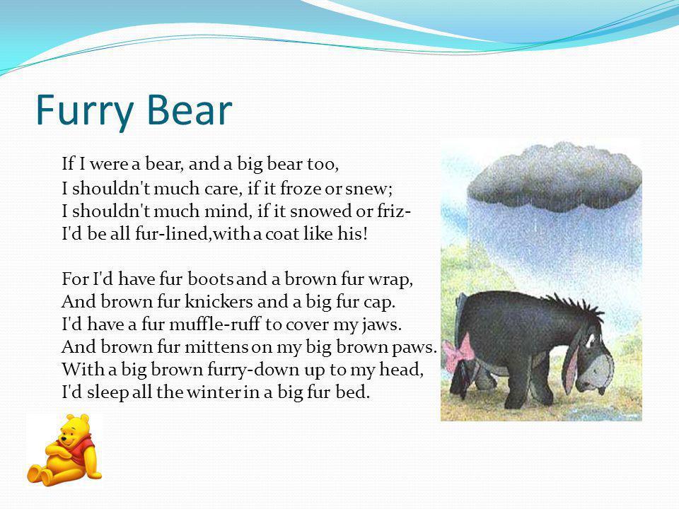 Furry Bear