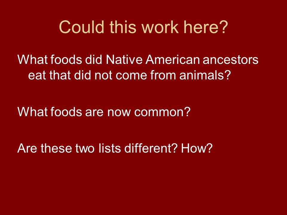 Could this work here What foods did Native American ancestors eat that did not come from animals What foods are now common