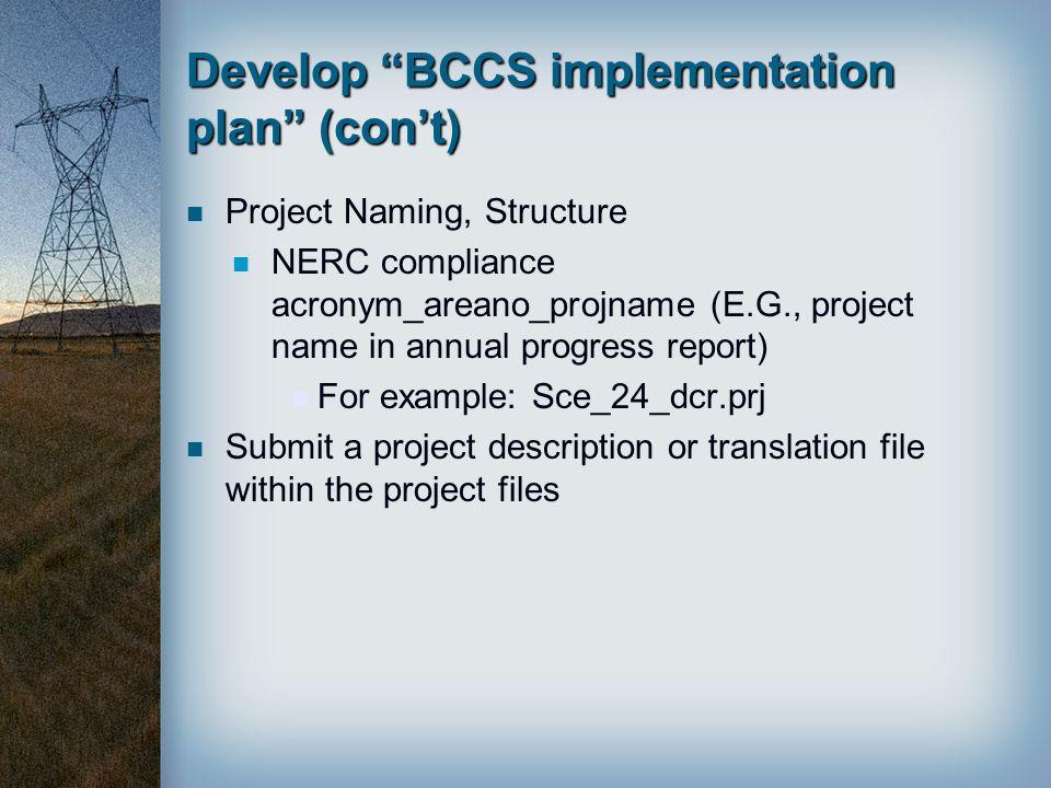 Develop BCCS implementation plan (con't)