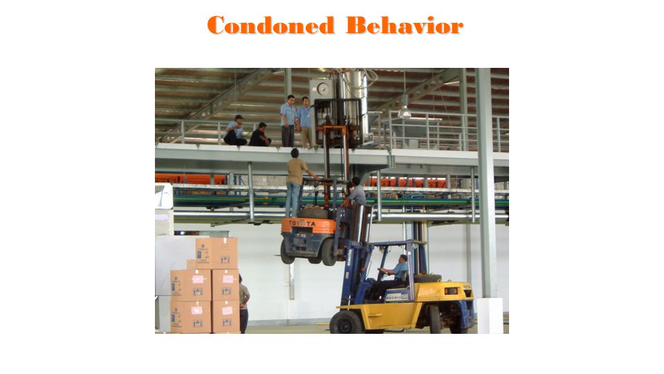Condoned Behavior