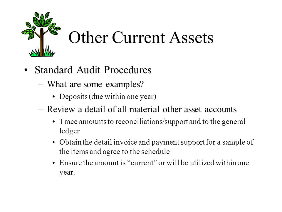 Other Current Assets Standard Audit Procedures What are some examples