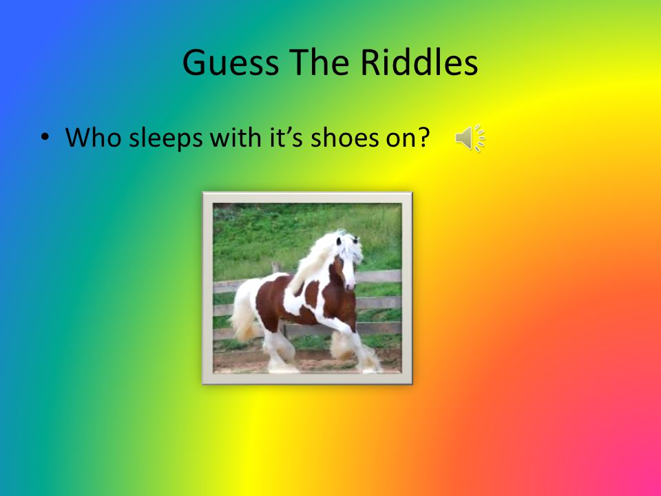 Guess The Riddles Who sleeps with it's shoes on