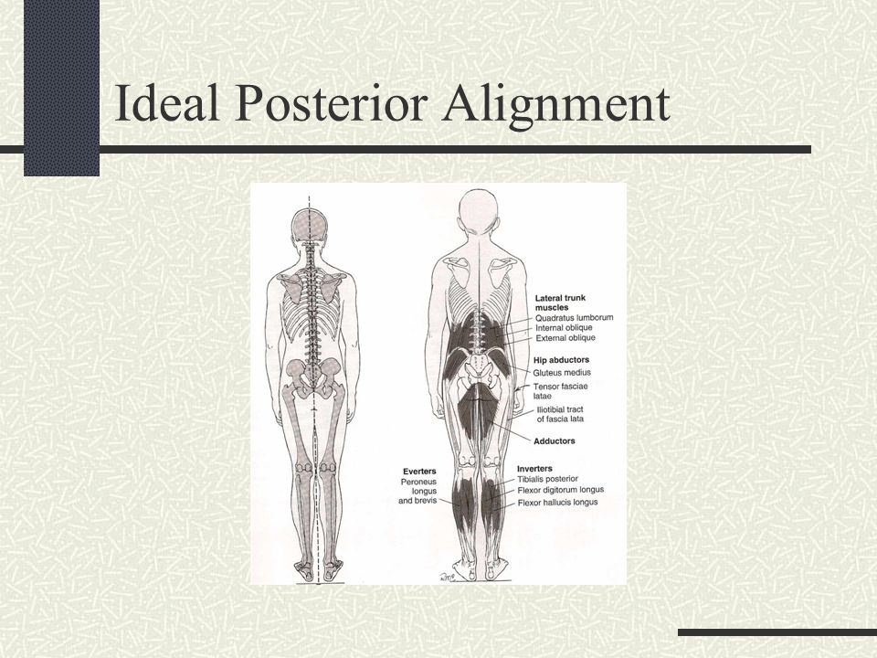 Ideal Posterior Alignment
