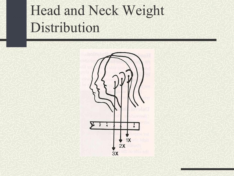 Head and Neck Weight Distribution