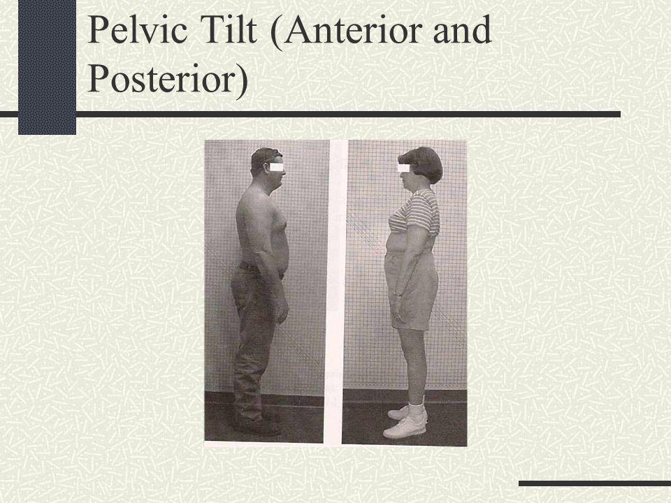 Pelvic Tilt (Anterior and Posterior)
