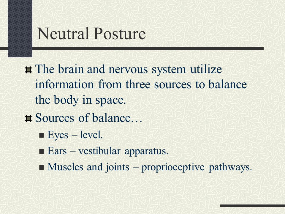 Neutral Posture The brain and nervous system utilize information from three sources to balance the body in space.