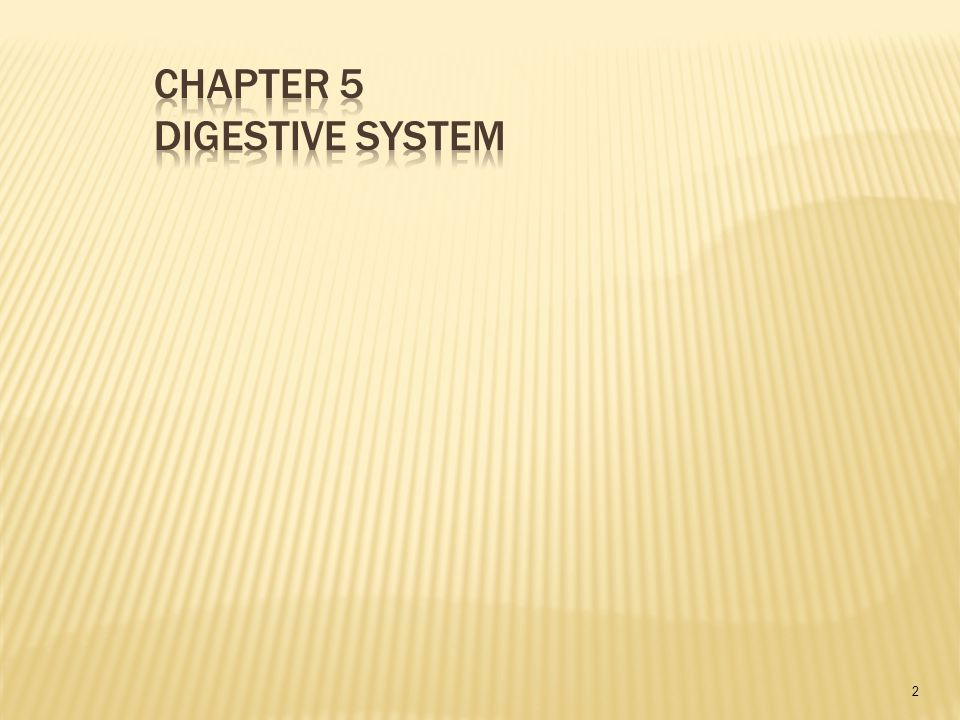 Chapter 5 Digestive System