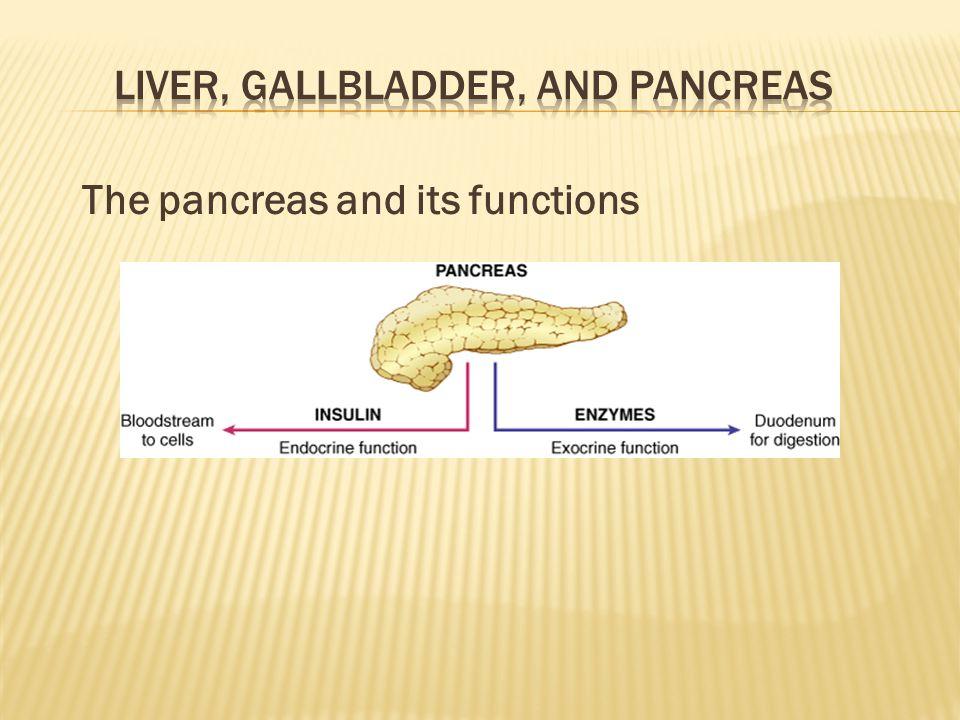 Liver, Gallbladder, and Pancreas