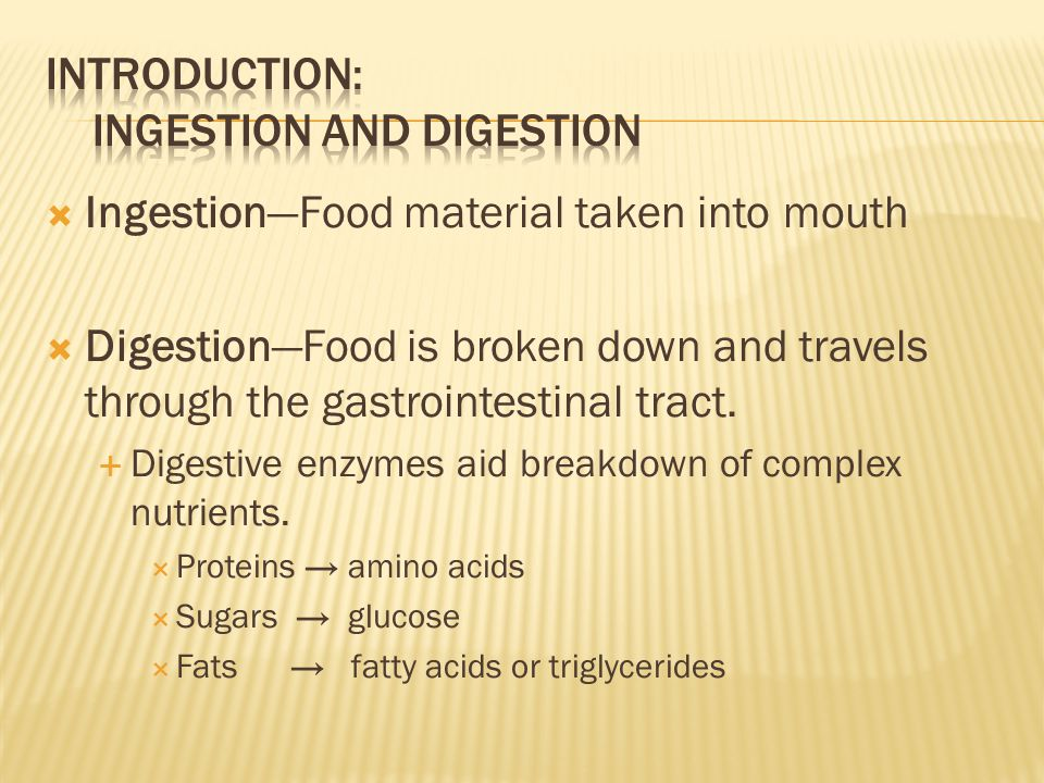 Introduction: Ingestion and Digestion