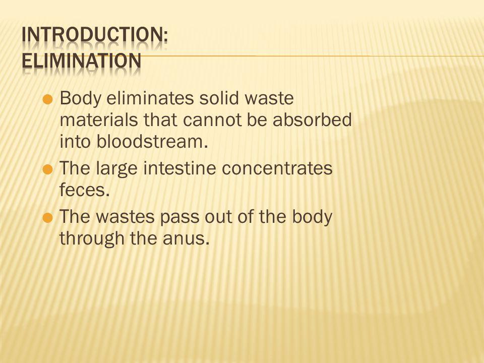 Introduction: Elimination