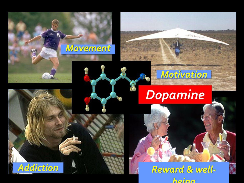 Dopamine Movement Motivation Addiction Reward & well-being