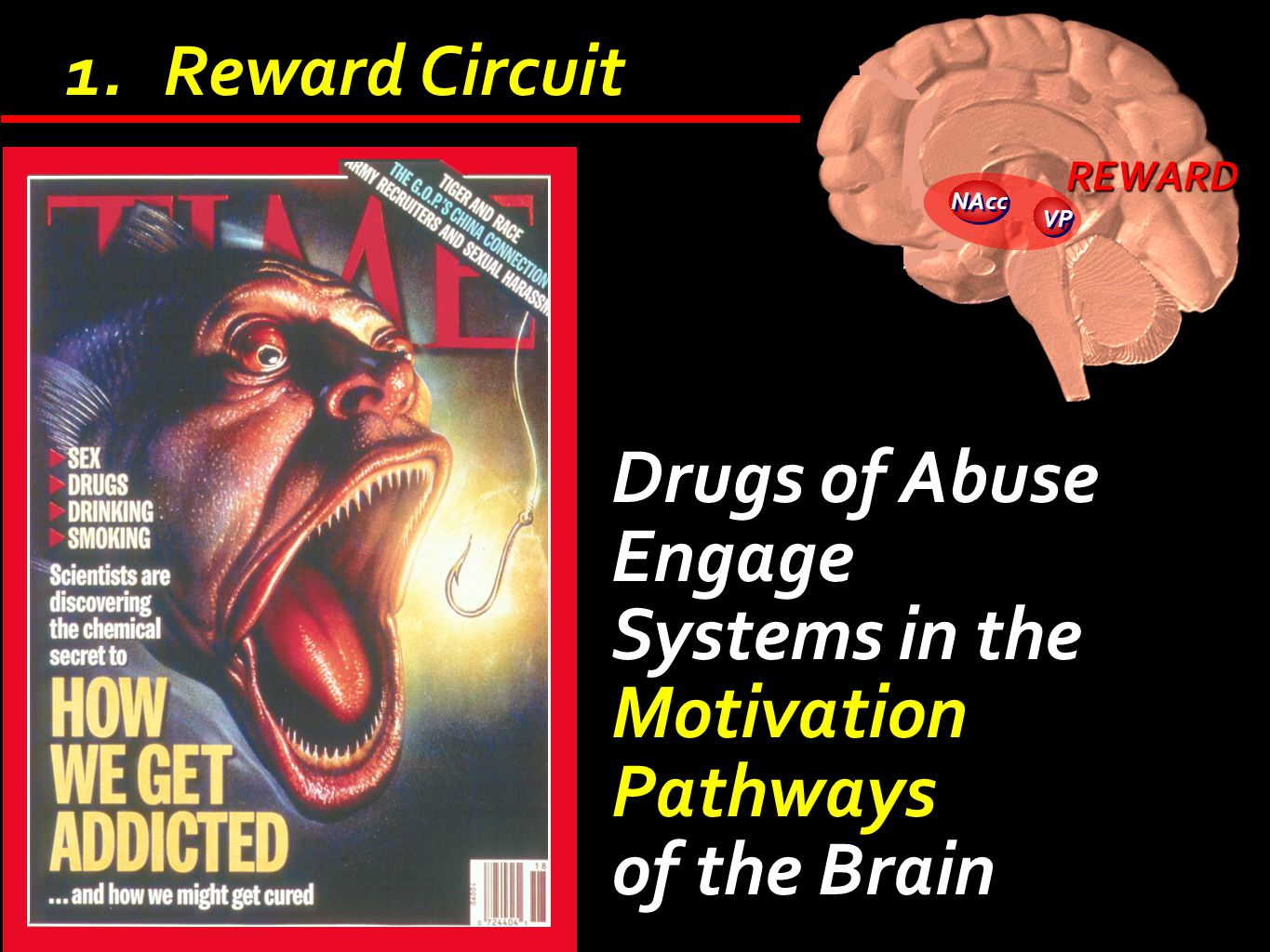 Drugs of Abuse Engage Systems in the Motivation Pathways of the Brain